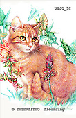 Marie, REALISTIC ANIMALS, REALISTISCHE TIERE, ANIMALES REALISTICOS, paintings+++++Mississippi,USJO52,#A# ,Joan Marie cat