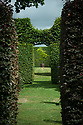 View through copper beech and hornbeam hedges, Town Place, late June.