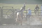 VHSRA - Fairfield, VA -  5.17.2015 - Bulls & Roughstock
