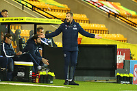3rd November 2020; Carrow Road, Norwich, Norfolk, England, English Football League Championship Football, Norwich versus Millwall; Millwall Manager Gary Rowett complains to the fourth official about a decision
