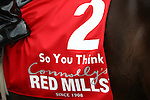 03.09.2011 The Irish Champion Stakes from Leopardstown. .So You Think wins the Red Mills Irish Champion Stakes