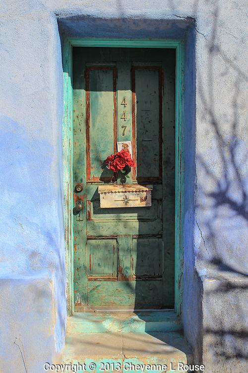 Green Door with Red Flowers - Arizona