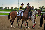 TORONT,CANADA-SEP 15: Decorated Invader,ridden by Irad Ortiz jr, is post parading before the Summer Stakes at Woodbine Race Track on September 15,2019 in Toronto,Ontario,Canada. Kaz Ishida/Eclipse Sportswire/CSM
