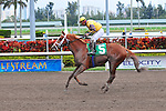 31 January 2010:  Prince Will I Am with jockey Paco Lopez in the sixth race at Gulfstream Park in Hallandale Beach, Florida.