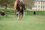 2017 Belton Horse Trials