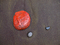 A bright red stone on the black sand beach of Pololu Valley, Big Island.