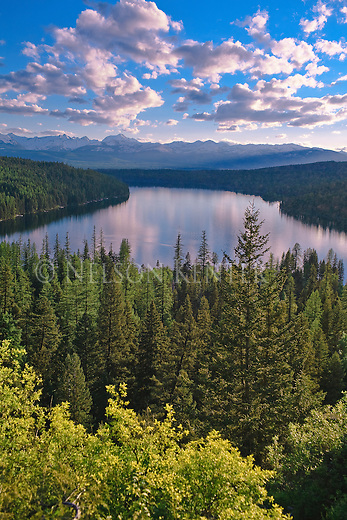 Holland Lake on a summer evening in western Montana's Seeley Swan Valley