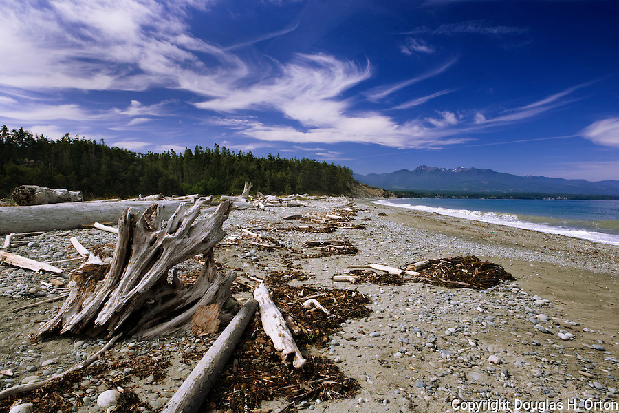 Famous Dungeness Spit near Sequim, Washington also hosts the Dungeness Recreation Area, Dungeness Lighthouse, and Dungeness National Wildlife Refuge.  Camping, fishing, hiking, equestrian activities, and wildlife viewing are excellent. Olympic Peninsula