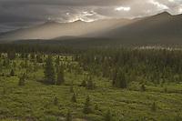 Sunset over the mountains in Denali National Park, Alaska.