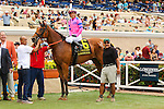 DEL MAR, CA  AUGUST 6: #6 Champagne Room ridden by Mario Gutierrez in the winners circle after winning the Sorrento Stakes (Gll) at Del Mar Turf Club on August 6, 2016 at Del Mar, CA (Photo by Casey Phillips/Eclipse Sportswire/Getty Images)DEL MAR, CA  AUGUST 6: #6 Champagne Room ridden by Mario Gutierrez wins the Sorrento Stakes (Gll) at Del Mar Turf Club on August 6, 2016 at Del Mar, CA (Photo by Casey Phillips/Eclipse Sportswire/Getty Images)
