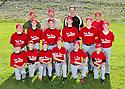 North Mason Little League