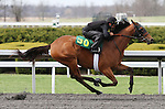 April 03, 2014: Hip 30 Lemon Drop Kid - Ready Willing Abel consigned by Wavertree Stables worked 1/8 in 10:1.  Candice Chavez/ESW/CSM