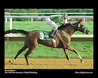 As seen in the Arabian Horse Galleries exhibit at The Kentucky Horse Park<br /> <br /> Royal Atheena .The 1999 Pratt Insurance / Markel Handicap
