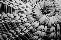 A fine art abstract of a detail of a Mexican basket, in black-and-white, showing a section of the weaving from the center spiraling out towards an edge, showing circular fibers interwoven with triangular shapes.