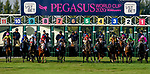 January 25, 2020: during the Pegasus World Cup Invitational at Gulfstream Park Race Track in Hallandale Beach, Florida. John Voorhees/Eclipse Sportswire/CSM