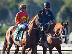 """September 26, 2015: Hoppertunity in the post parade for the Breeders' Cup """"Win and You're In"""" Awesome Again Stakes at Santa Anita Park in Arcadia, California. Zoe Metz/ESW/CSM"""