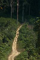 Rodovia TransassurinÌ, próximo ao rio Xingú oeste do estado. <br /> Senador José PorfÌrio, Pará,  Brasil<br /> 17/08/2005<br /> Foto Paulo Santos/Interfoto