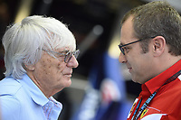 2020 FIA Formula One announce Stefano Domenicali as new CEO Sep 26th