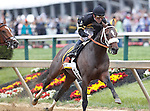 May 18, 2013, Oxbow (#6), Gary Stevens up, wins the 138th Preakness Stakes at Pimlico Race Course in Baltimore, MD. First time by the stands - Oxbow leads wire to wire.  (Joan Fairman Kanes/Eclipse Sportswire)