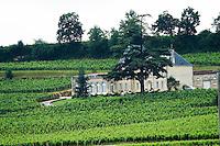 chateau fonplegade saint emilion bordeaux france