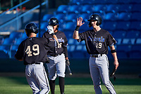Missoula Osprey Nick Grande (49) is congratulated by Kevin Watson Jr. (19) after hitting a home run during a Pioneer League game against the Great Falls Voyagers at Centene Stadium at Legion Park on August 19, 2019 in Great Falls, Montana. Missoula defeated Great Falls 4-1 in the first game of a doubleheader. Games were moved from Missoula after Ogren Park at Allegiance Field, the Osprey's home field, was ruled unplayable. (Zachary Lucy/Four Seam Images)