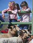 From left, Ariana Shane and Elena Lanza, both 5, check out goats and sheep at the annual Farm Days event at Fuji Park in Carson City, Nev., on Thursday, April 17, 2014.<br /> Photo by Cathleen Allison