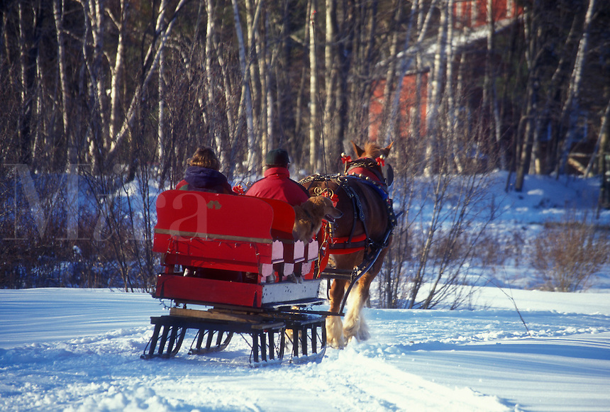 sleigh ride, Vermont, Stowe, VT, One horse open sleigh ride at Charlie Horse Sleigh Rides in Stowe in winter.