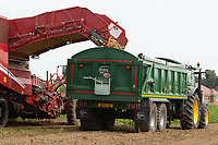 22-7-2021 Lifting early potatoes in South Lincolnshire. <br /> ©Tim Scrivener Photographer 07850 303986<br />      ....Covering Agriculture In The UK....