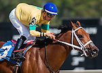 OLDSMAR, FL - JANUARY 21: The Money Monster #3 (blue cap), ridden by Edgard J. Zayas, wins the Pasco Stakes on Skyway Festival Day at Tampa Bay Downs on January 21, 2017 in Oldsmar, Florida. (Photo by Douglas DeFelice/Eclipse Sportswire/Getty Images)