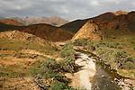 .Wad Azerho on the road to Homhil. Socotra island. Yemen