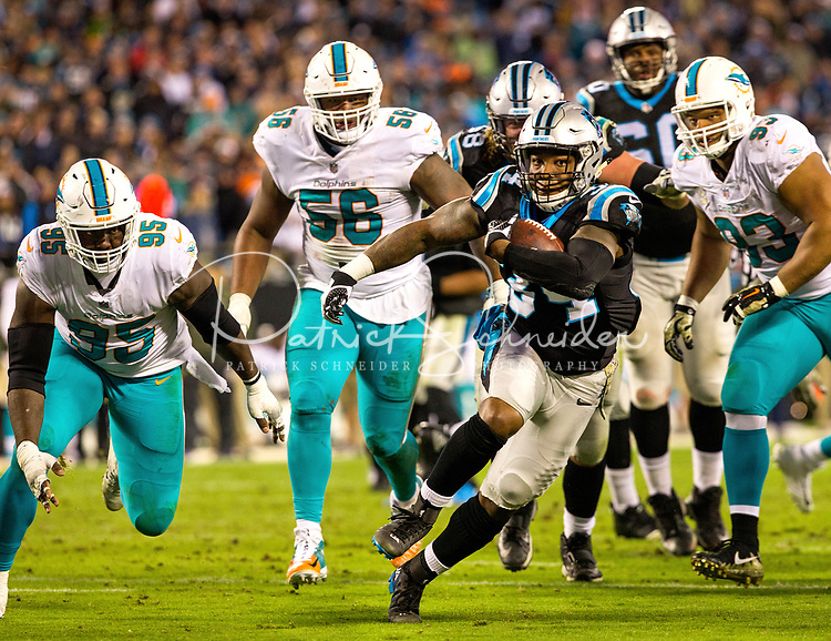 The Carolina Panthers v. The Miami Dolphins   during their NFL Monday night game at  Bank of America Stadium in Charlotte, North Carolina.<br /> <br /> Charlotte Photographer -PatrickSchneiderPhoto.com