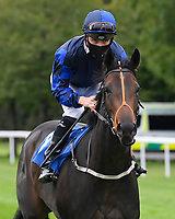 Rania ridden by Jason Watson goes down to the start of The Irish Stallion Farms EBF Fillies' Nursery Stakes       during Horse Racing at Salisbury Racecourse on 11th September 2020