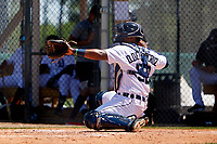 Detroit Tigers catcher Danuerys De La Cruz (52) during a Minor League Spring Training game against the Toronto Blue Jays on April 22, 2021 at Tigertown in Lakeland, Florida.  (Mike Janes/Four Seam Images)