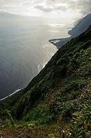 Faja dos Cubres auf der Insel Sao Jorge, Azoren, Portugal