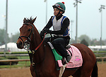 LOUISVILLE, KY - APRIL 23: Dream Dance (Afleet Alex x This Cat Can Dance, by Vindication) leaves the track after exercising in preparation for the Kentucky Oaks. Owner Stoneway Farm, trainer Neil J. Howard. (Photo by Mary M. Meek/Eclipse Sportswire/Getty Images)