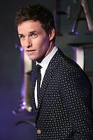 "Eddie Redmayne<br /> at the premiere of ""Fantastic Beasts and where to find them"", Odeon Leicester Square, London.<br /> <br /> <br /> ©Ash Knotek  D3198  15/11/2016"