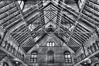 The interior roof detail of the waiting room in the Central Railroad of New Jersey (CRRNJ) Terminal, located in Liberty State Park, Jersey City, New Jersey.