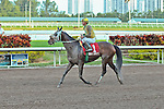 30 January 2010: Sunshine Millions Distaff Cat Can Do (Paco Lopez) at Gulfstream Park in Hallandale Beach, FL.