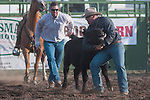 Competitors chases after a steer in the Double Mugging event at the Minden Ranch Rodeo Buckaroo Fest during the NV150 Fair at Fuji Park in Carson City, Nev., on Saturday, August 2, 2014.<br /> (Photo By Kevin Clifford)