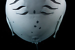 Japanese Noh Kabuki Mask that is actually a Manta Ray belly with twin remoras making long ear lobes.