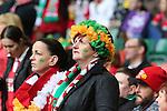 Patriotic Ireland rugby fans<br /> RBS 6 Nations<br /> Wales v Ireland<br /> Millennium Stadium<br /> 14.03.15<br /> ©Steve Pope - SPORTINGWALES