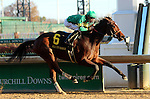 November 26, 2015 Ahh Chocolate (Brian Hernandez Jr.) wins the 100th running of the G2 Falls City Handicap, one and one eighth miles on dirt for fillies and mares 3yo and up. Owner Stoneway Farm (James L. Stone), trainer Neil J. Howard. By Candy Ride x Ahh (Saint Liam) ©Mary M. Meek/ESW/CSM