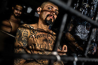 """A local leader of the Mara Salvatrucha gang (MS-13) shows a hand sign, representing his gang, in a cell at the detention center in San Salvador, El Salvador, 20 February 2014. Although the country's two major gangs reached a truce in 2012, the police holding cells currently house more than 3000 inmates, five times more than the official built capacity. Partly because the ordinary Mara gang members did not break with their criminal activities (extortion, street-level distribution of drugs, etc.), partly because Salvadorean police still applies controversial anti-gang law which allows to detain almost anyone for """"suspicion of gang membership"""". Accused young men are held in police detention centers where up to 25 inmates may share a cell of five-by-five metres. Here, in the dark overcrowded cages, under harsh and life-threatening conditions, suspected gang members wait long months, sometimes years, for trial or for to be transported to a regular prison."""