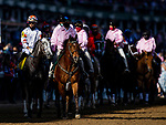 APRIL 30, 2021: Crazy Beautiful in the Pst Parade before the Kentucky Oaks at Churchill Downs in Louisville, Kentucky on April 30, 2021. EversEclipse Sportswire/CSM