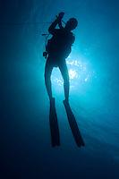 One scuba diver underwater near the Baa Atoll, Maldive Islands.