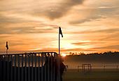 Sunrise over Springdale Race Course.