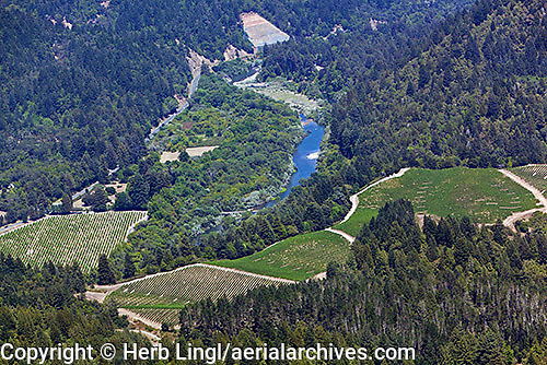 Aerial photograph <br /> Russian River Sonoma Coast Pinot Noir vineyards