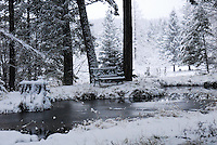 Frozen pond with park bench and snow.
