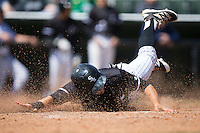 Tyler Sullivan (5) of the Kannapolis Intimidators slides head first across home plate during the game against the Delmarva Shorebirds at Kannapolis Intimidators Stadium on April 13, 2016 in Kannapolis, North Carolina.  The Intimidators defeated the Shorebirds 8-7.  (Brian Westerholt/Four Seam Images)
