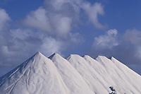 mountains of salt await shipment at Cargill Salt Bonaire (formerly Antilles International Salt Co.) Bonaire, Netherland Antilles (Dutch ABC Islands) (Caribbean, Atlantic)
